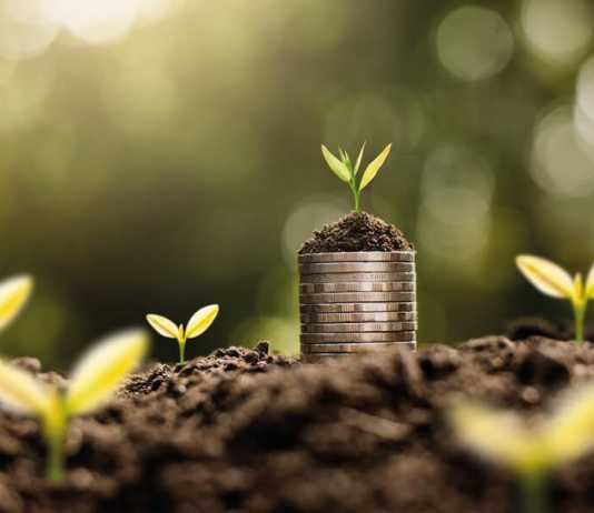 The Rise of ESG Financial Products