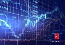 Traderfex